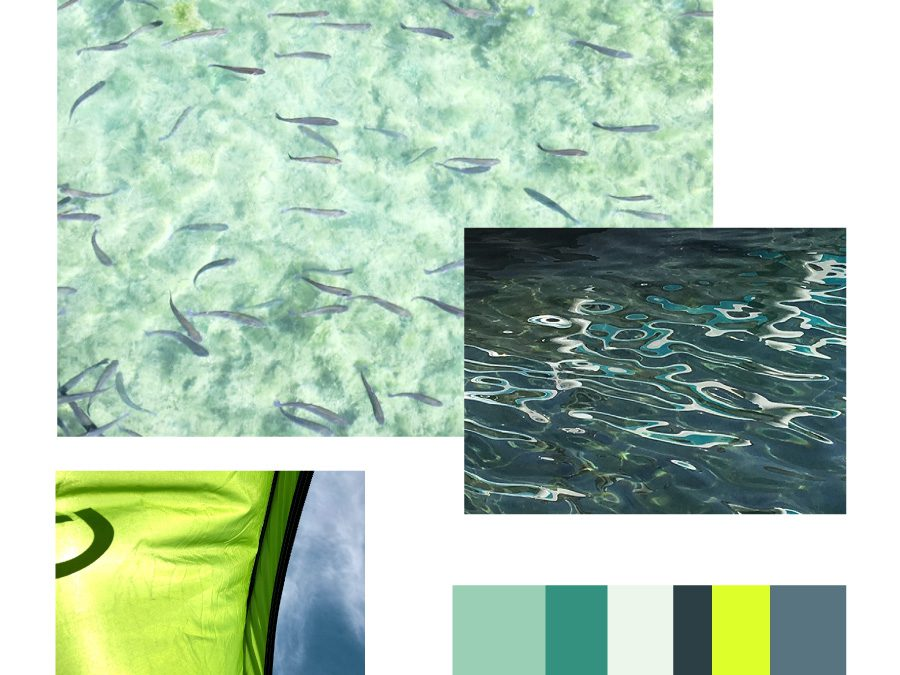 Colour mood & inspiration 10/19